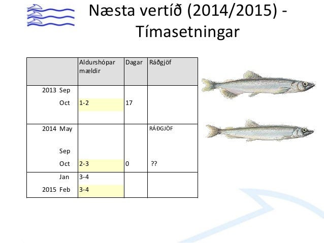 Mælingar – sept 2013 Immature Age 1 2 3 Total Total N* 10-6 60080 6937 1340 68358 Total B (t) 350427 75704 14973 441104 Av...