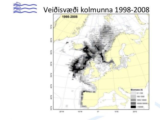 Veiðisvæði kolmunna 1998-2008