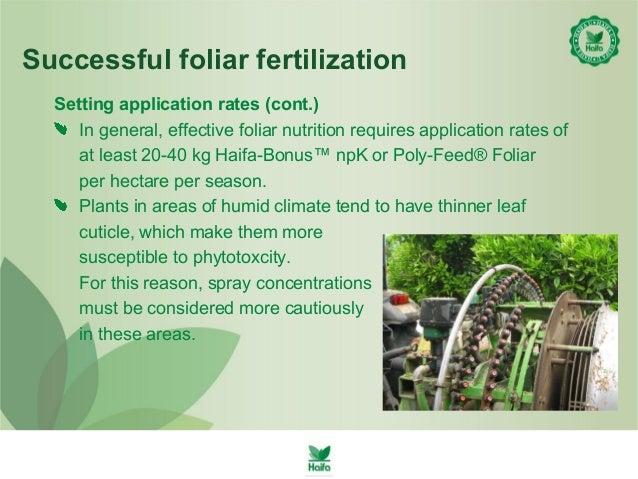 Foliar Feeding with Haifa Fertilizers