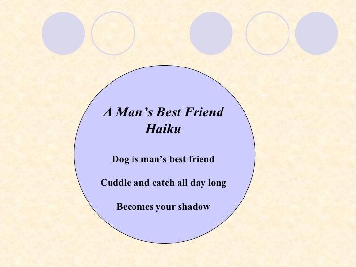 Haiku Activity