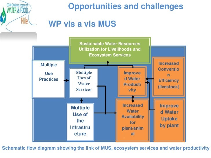 Opportunities and challenges                   WP vis a vis MUS                                Sustainable Water Resources...