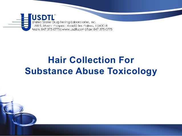 Hair Collection For Substance Abuse Toxicology