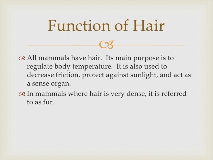 evidence hair evidence In the largest post conviction review of evidence, the fbi is now revisiting federal  cases involving comparative hair analysis, many of which date.