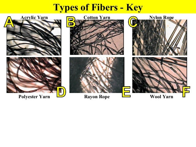 Hair Fibers