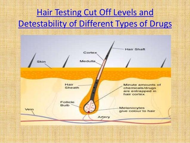 alprazolam hair drug test