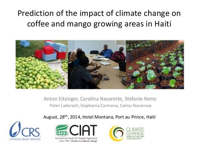 Prediction of the impact of climate change on  coffee and mango growing areas in Haiti  Anton Eitzinger, Carolina Navarett...