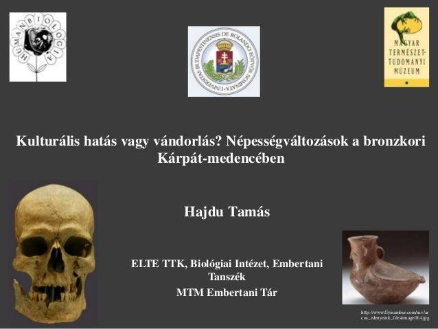 Kulturális hatás vagy vándorlás? Népességváltozások a bronzkori Kárpát-medencében Hajdu Tamás ELTE TTK, Biológiai Intézet,...