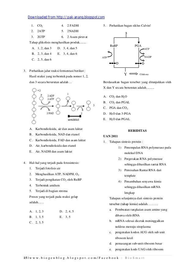 Hal 1 30 Kumpulan Arsip Soal Un Biologi Sma Tahun 2009 2012