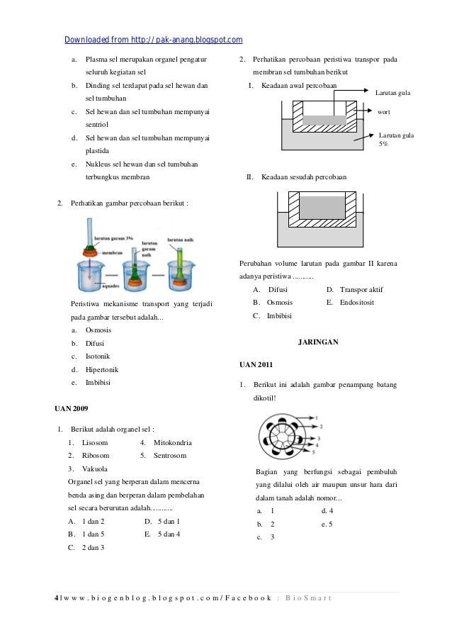 (Hal 1 30)kumpulan arsip soal un biologi sma tahun 2009-2012