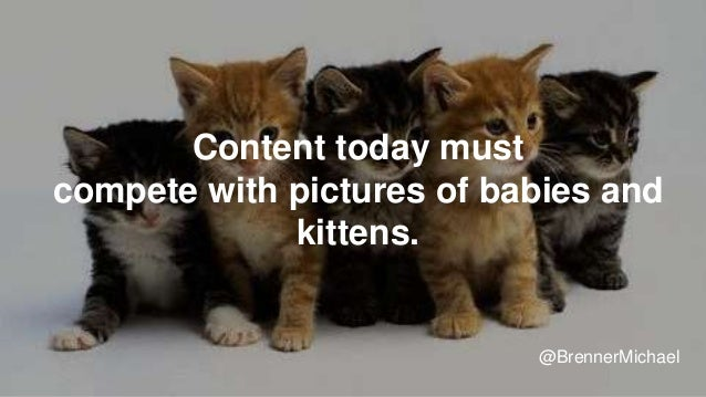 Content today must compete with pictures of babies and kittens. @BrennerMichael