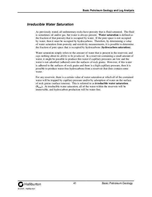 book economic stress human capital and families