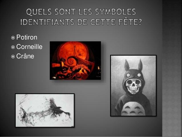  Potiron  Corneille  Crâne