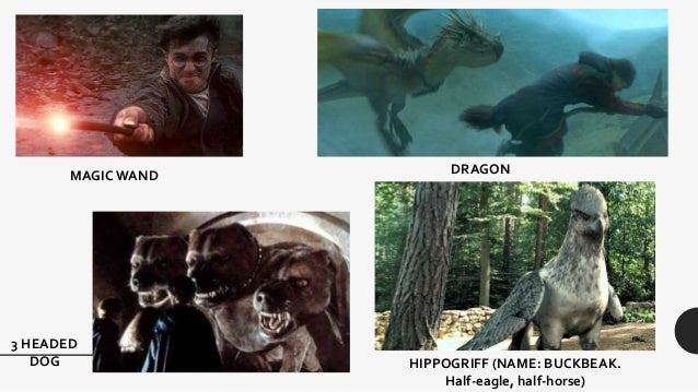 Hippogriff names for dogs