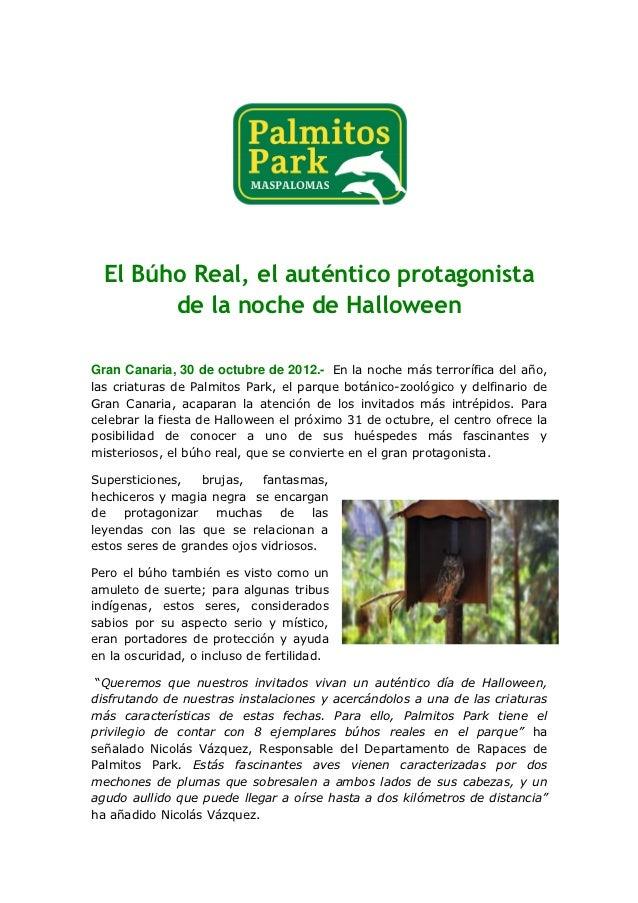El Búho Real, el auténtico protagonista        de la noche de HalloweenGran Canaria, 30 de octubre de 2012.- En la noche m...