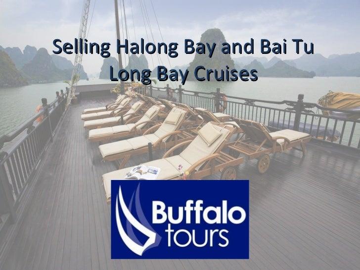 Selling Halong Bay and Bai Tu Long Bay Cruises