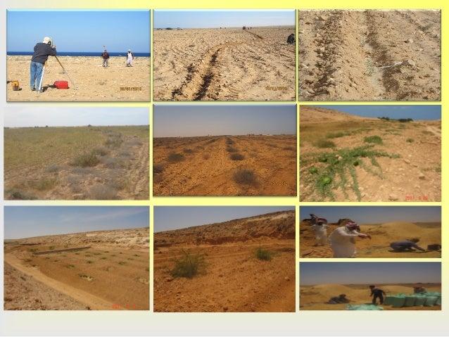 T5: Development of Wadi Halq El-Dabaa, NWCZ, Egypt