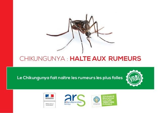 Le Chikungunya fait naître les rumeurs les plus folles CHIKUNGUNYA : HALTE AUX RUMEURS