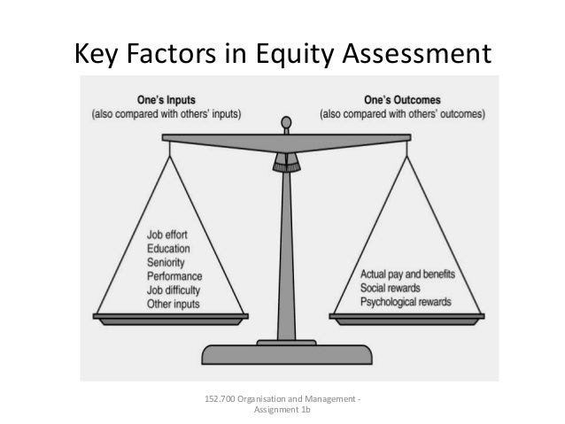 Key Factors in Equity Assessment152.700 Organisation and Management -Assignment 1b