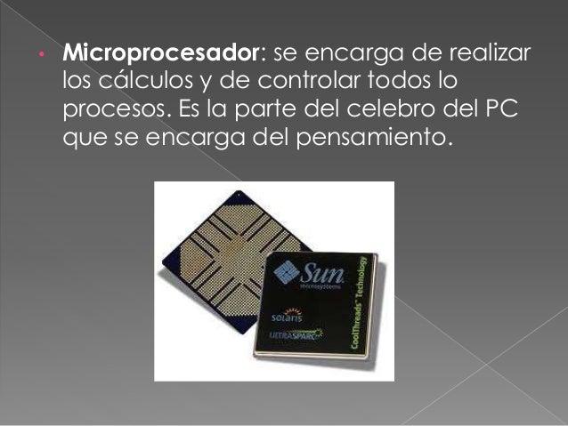 • Pastillas RAM: pequeñas pastillas de memoria que almacenan los datos y programas que se están usando. Se borran al apaga...