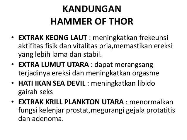 hammer of thor obat kuat pembesar penis