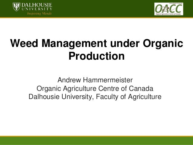 dal.ca www.dal.ca  Weed Management under Organic Production Andrew Hammermeister Organic Agriculture Centre of Canada Dalh...