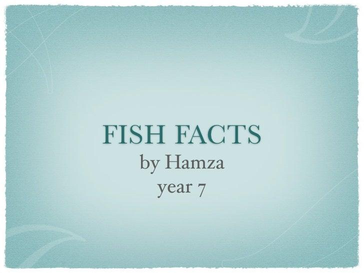 FISH FACTS  by Hamza    year 7
