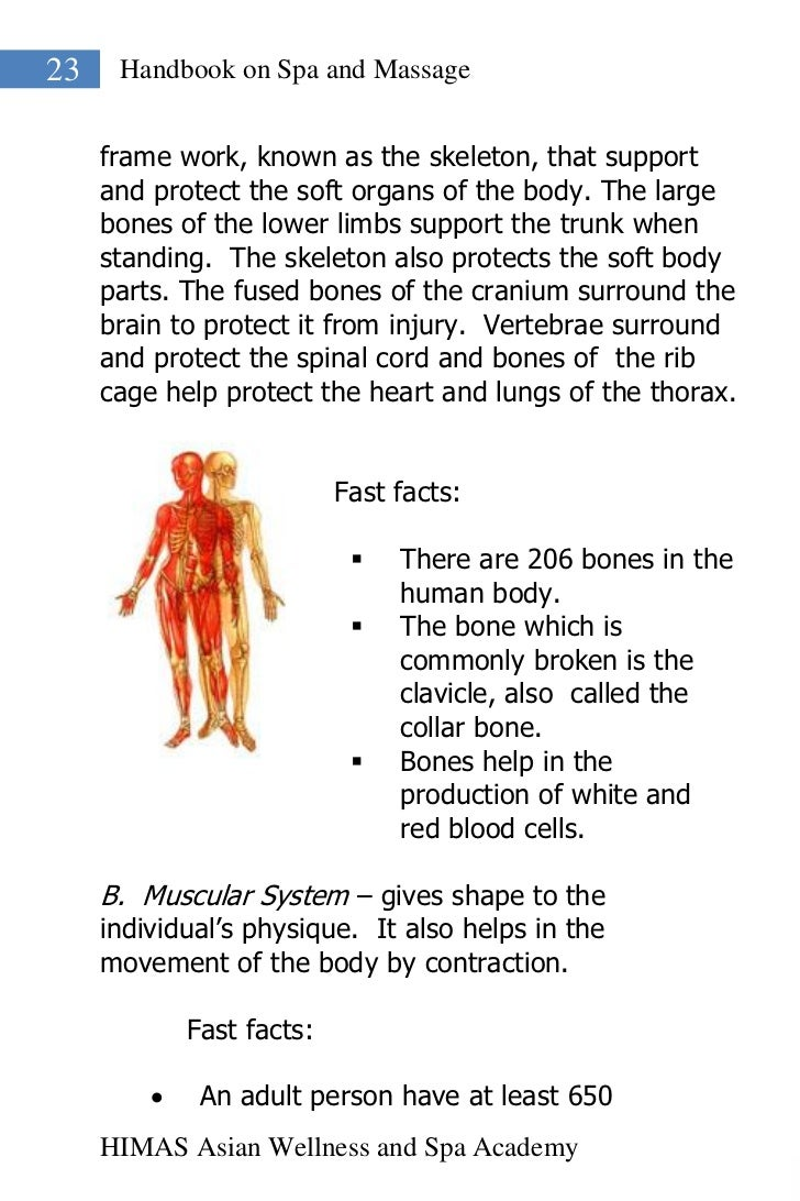 23    Handbook on Spa and Massage     frame work, known as the skeleton, that support     and protect the soft organs of t...