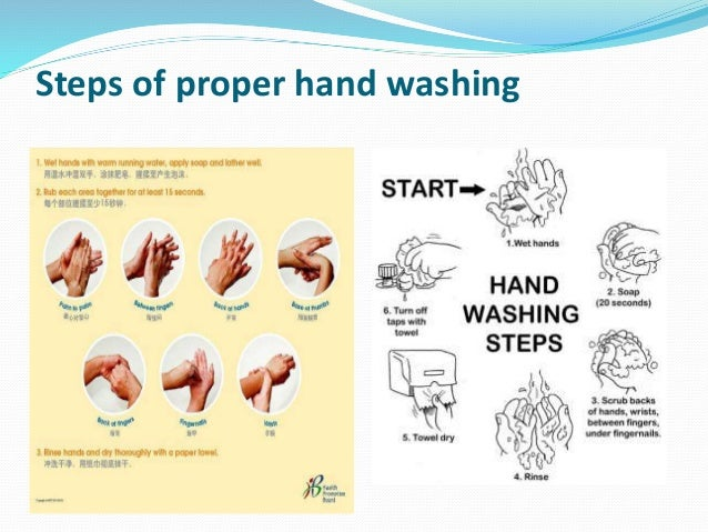 6 3 describe the correct sequence for hand washing Correctly washing your hands is an important step  the food premises, hand  washing facilities  3 scrub your hands for at least 20 seconds 4 rinse your  hands well under clean  6 avenue of the americas, newington nsw 2127 po  box.