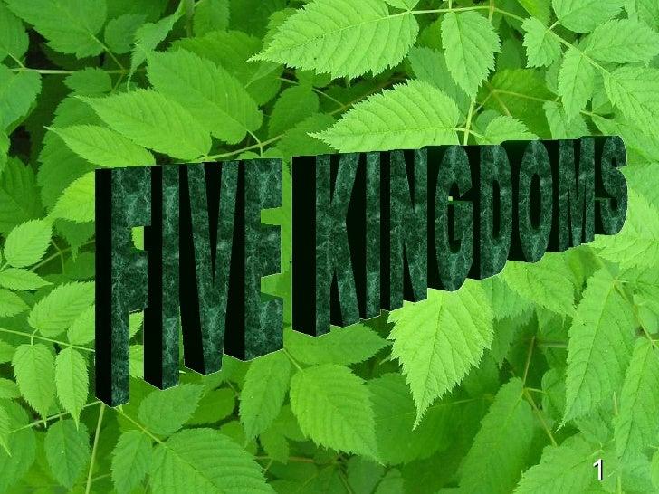 1 FIVE KINGDOMS