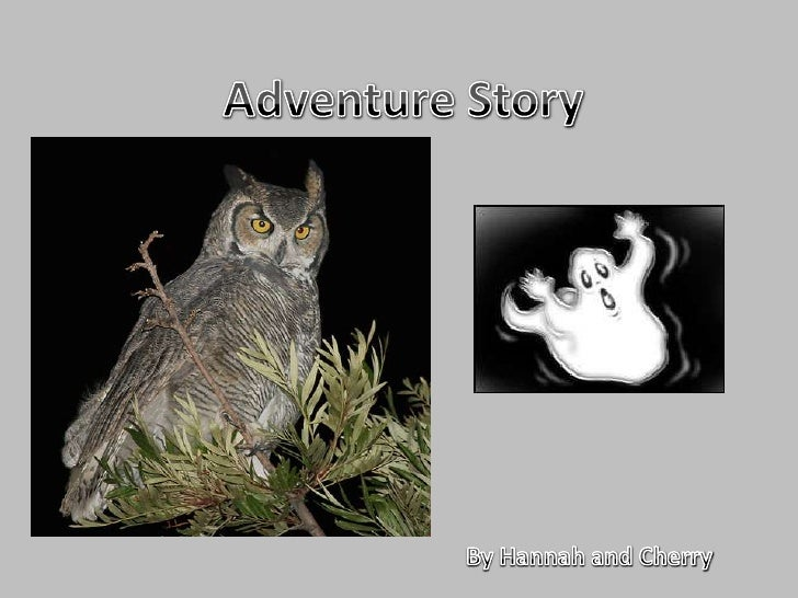 Adventure Story<br />By Hannah and Cherry<br />