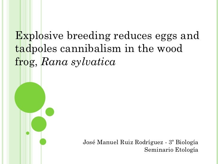 Explosive breeding reduces eggs and tadpoles cannibalism in the wood frog,  Rana sylvatica José Manuel Ruiz Rodríguez - 3º...