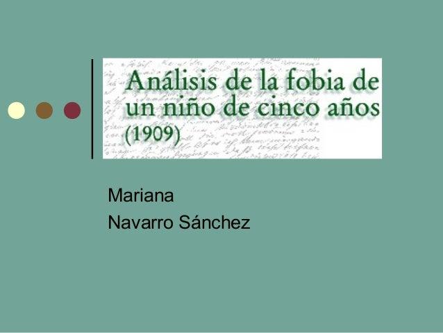 Mariana  Navarro Sánchez