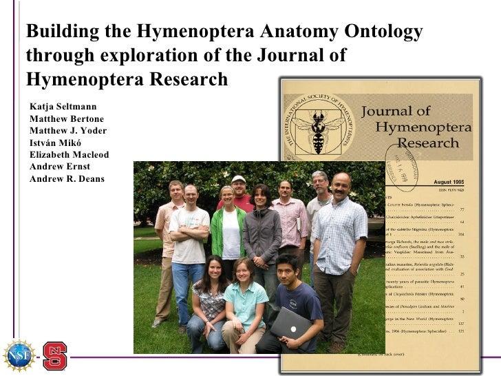 Building the Hymenoptera Anatomy Ontology  through exploration of the Journal of Hymenoptera Research Katja Seltmann  Matt...