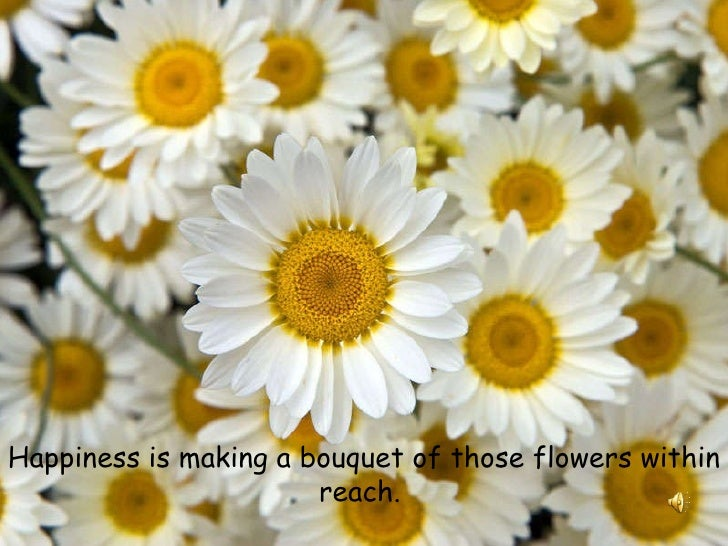 Happiness is making a bouquet of those flowers within reach.