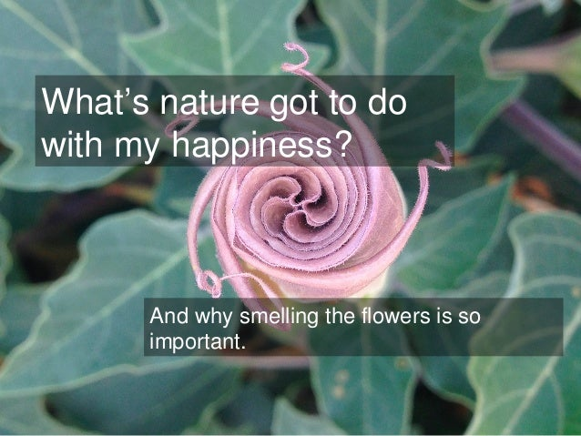 What's nature got to do with my happiness? And why smelling the flowers is so important.
