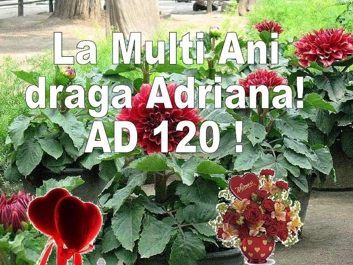 La Multi Ani draga Adriana! AD 120 !