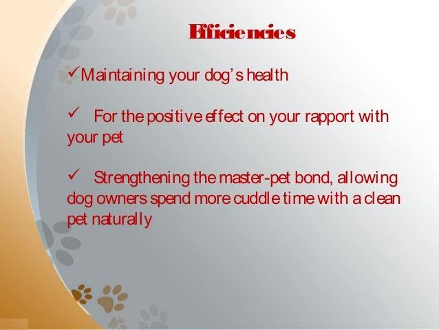 Happy bays offering premier self service dog wash in calgary dog wash routine 3 solutioingenieria Choice Image