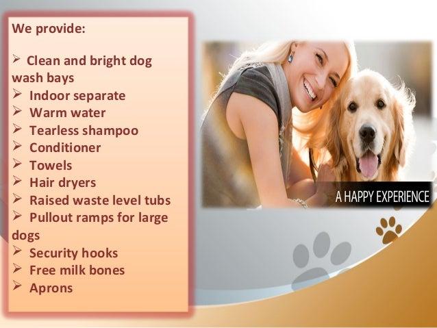 Happy bays offering premier self service dog wash in calgary solutioingenieria Choice Image
