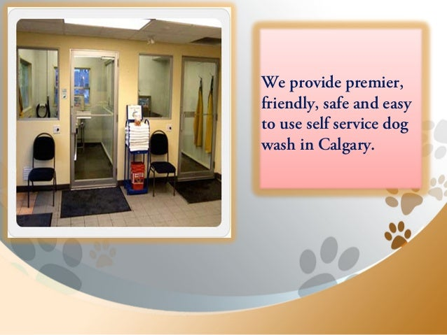 Happy bays offering premier self service dog wash in calgary 6 we provide premier friendly safe and easy to use self service dog wash in calgary solutioingenieria Choice Image