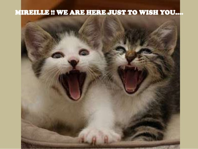 MIREILLE !! WE ARE HERE JUST TO WISH YOU....