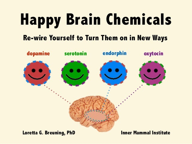 Image result for dopamine and oxytocin