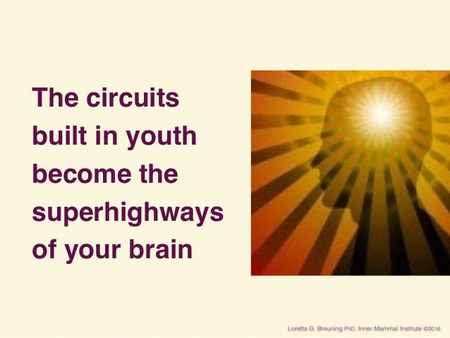 The circuits built in youth become the superhighways of your brain