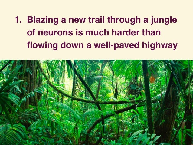 1. Blazing a new trail through a jungle of neurons is much harder than flowing down a well-paved highway