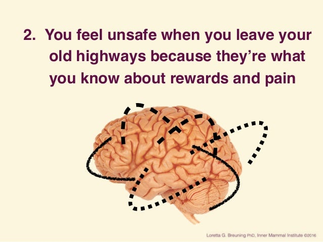 2. You feel unsafe when you leave your old highways because they're what you know about rewards and pain