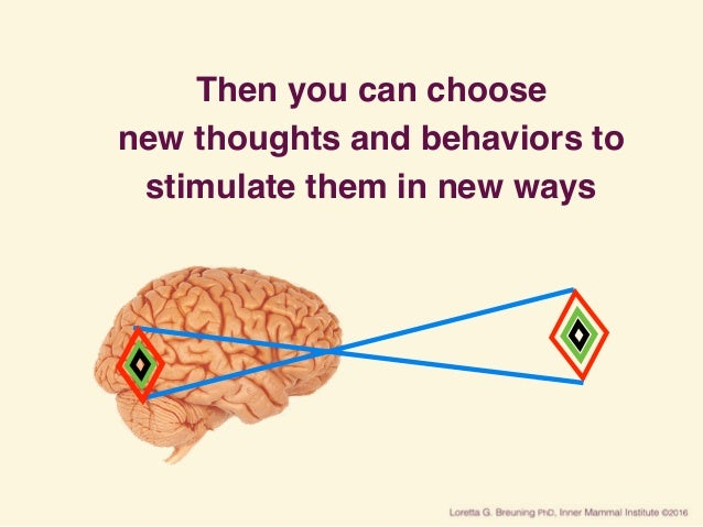 Then you can choose new thoughts and behaviors to stimulate them in new ways