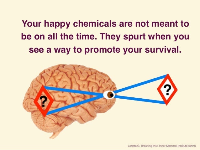 Your happy chemicals are not meant to be on all the time. They spurt when you see a way to promote your survival.