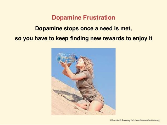 Dopamine Frustration Dopamine stops once a need is met, so you have to keep finding new rewards to enjoy it