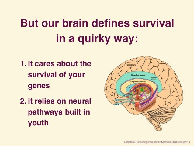 But our brain defines survival in a quirky way: 1. it cares about the survival of your genes 2. it relies on neural pathway...