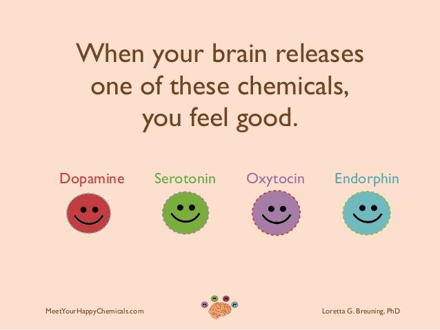 Image result for dopamine and serotonin in our brains