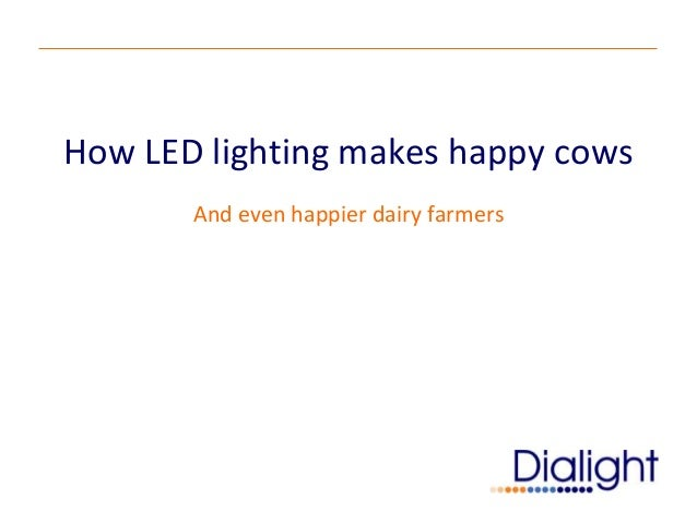 How LED lighting makes happy cows       And even happier dairy farmers
